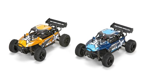 RC Desert Buggy ECX Roost 1:24 4WD RTR Farbwahl